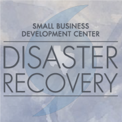 Disaster Recovery for Texas Small Businesses